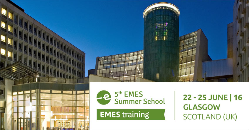 5<sup>th</sup> EMES International PhD Summer School